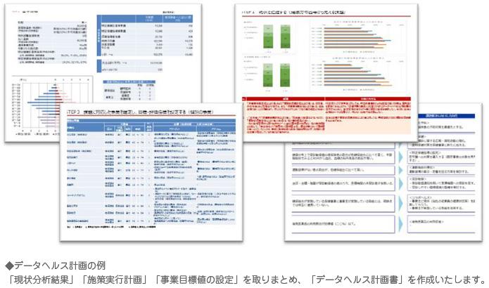 データヘルス計画の例